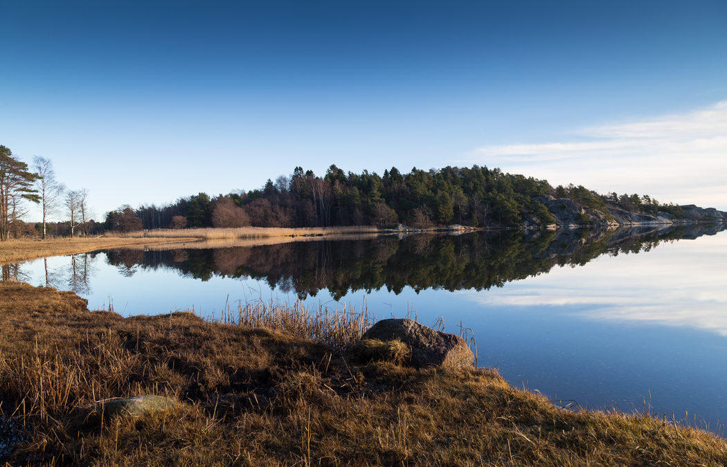 Foto: Knut Helge Stenseth