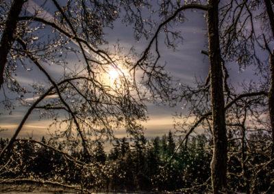 4. Signe Gry Isaksen - Månen viser veg i mørketiden (21 poeng)