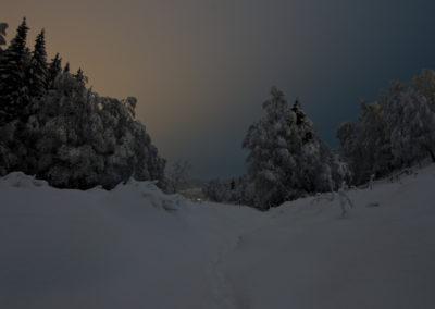 10. Vidar Hoel - Spor i natten (12 poeng)