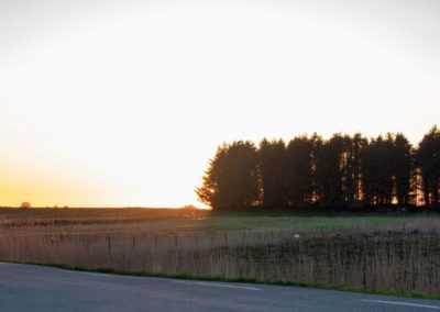 20. Inger Eik - Lyset bak hekken (0 poeng)