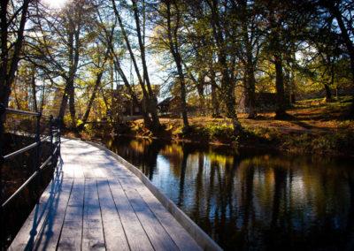 10. Edle Erøy - Parken (6 poeng)