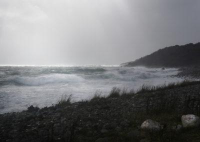 16. Grethe S. Husby - Opprømt hav. (3 poeng)