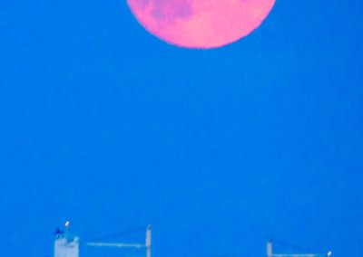 Hans Terjesen - kysttrafikk under fullmåne