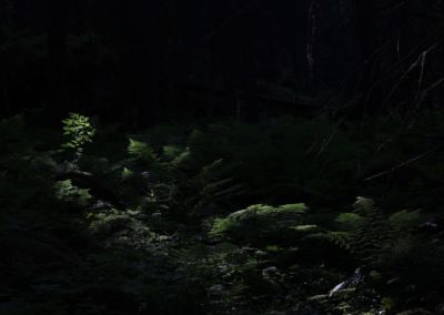 11. Unni Slettene - Solstrålen (7 poeng)