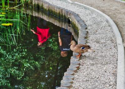 9.Knut Helge Stenseth - Hvem er det som tramper under min bro? (7 poeng)