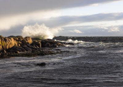 Edle Erøy - Havet bruser