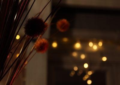 Vanessa Campelos - Night Sparkle