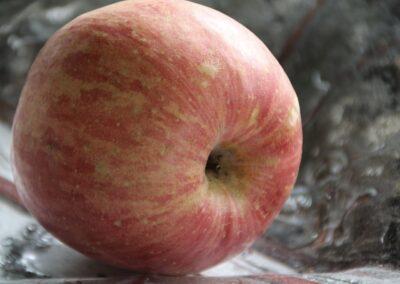 Inga-Irene Gauslå - One apple a day, keeps the doctor away