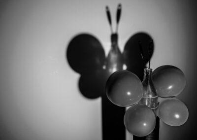 Linda Walbeck Olsen - Butterfly Effect