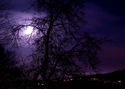 Terje Svalesen - Luna
